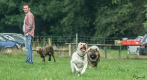HundespielenLüSe080815-02388